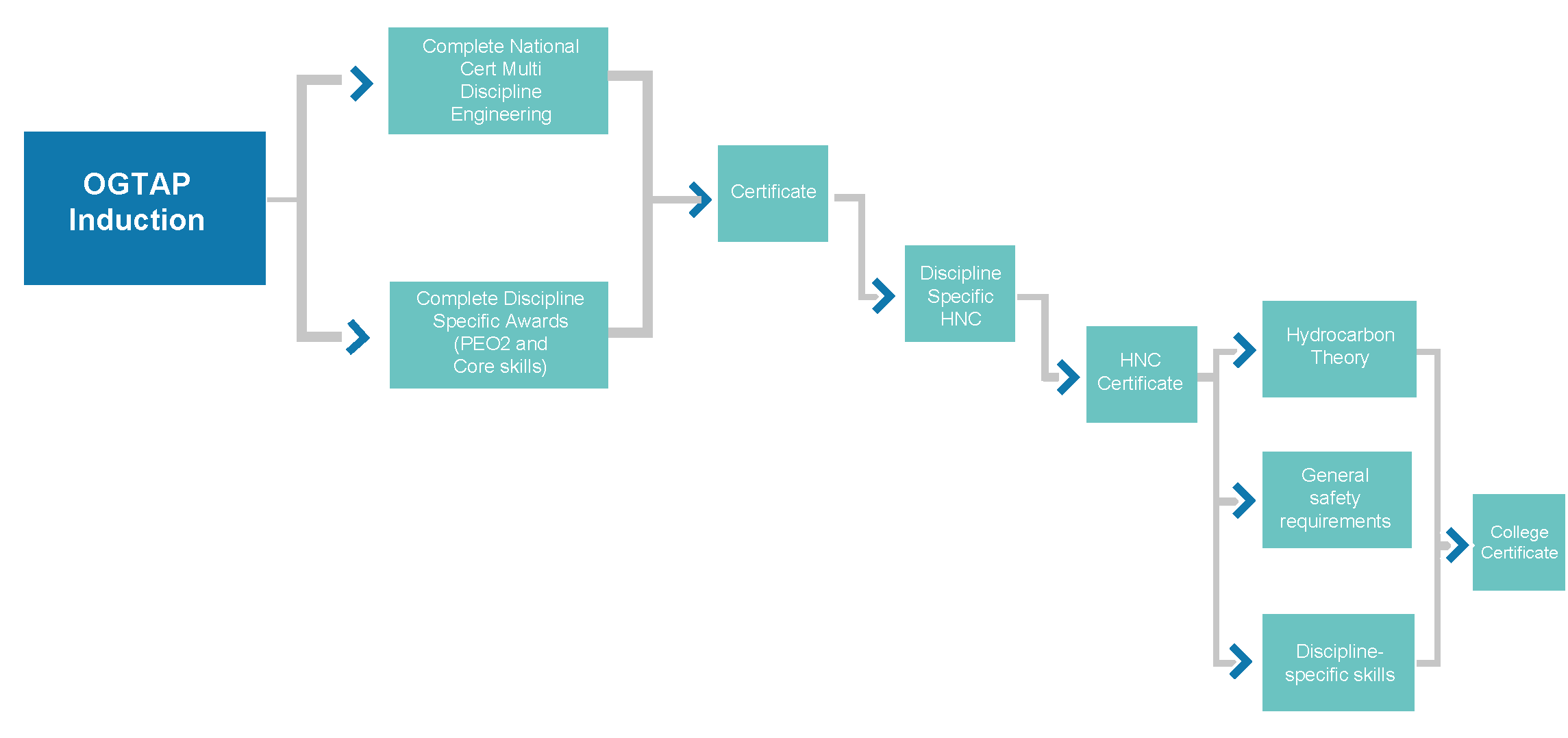 OGTAP Process Map
